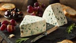 Las 5 mejores recetas con queso azul, celebra el día internacional por todo lo alto