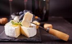 Queso brie vegano, receta para disfrutar de un queso sin leche