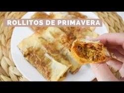 ROLLITOS DE PRIMAVERA | Monsieur Cuisine Plus