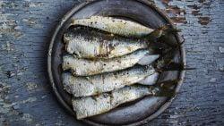 Sardinas asadas con ajo y perejil al microondas, receta rápida y saludable